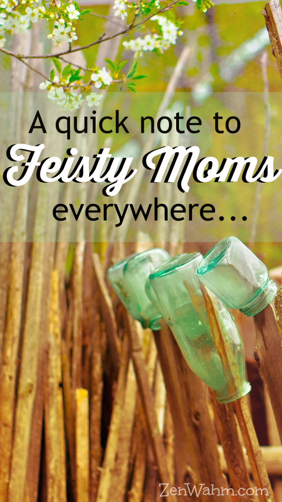 A quick note for feisty moms everywhere. ZenWahm.com